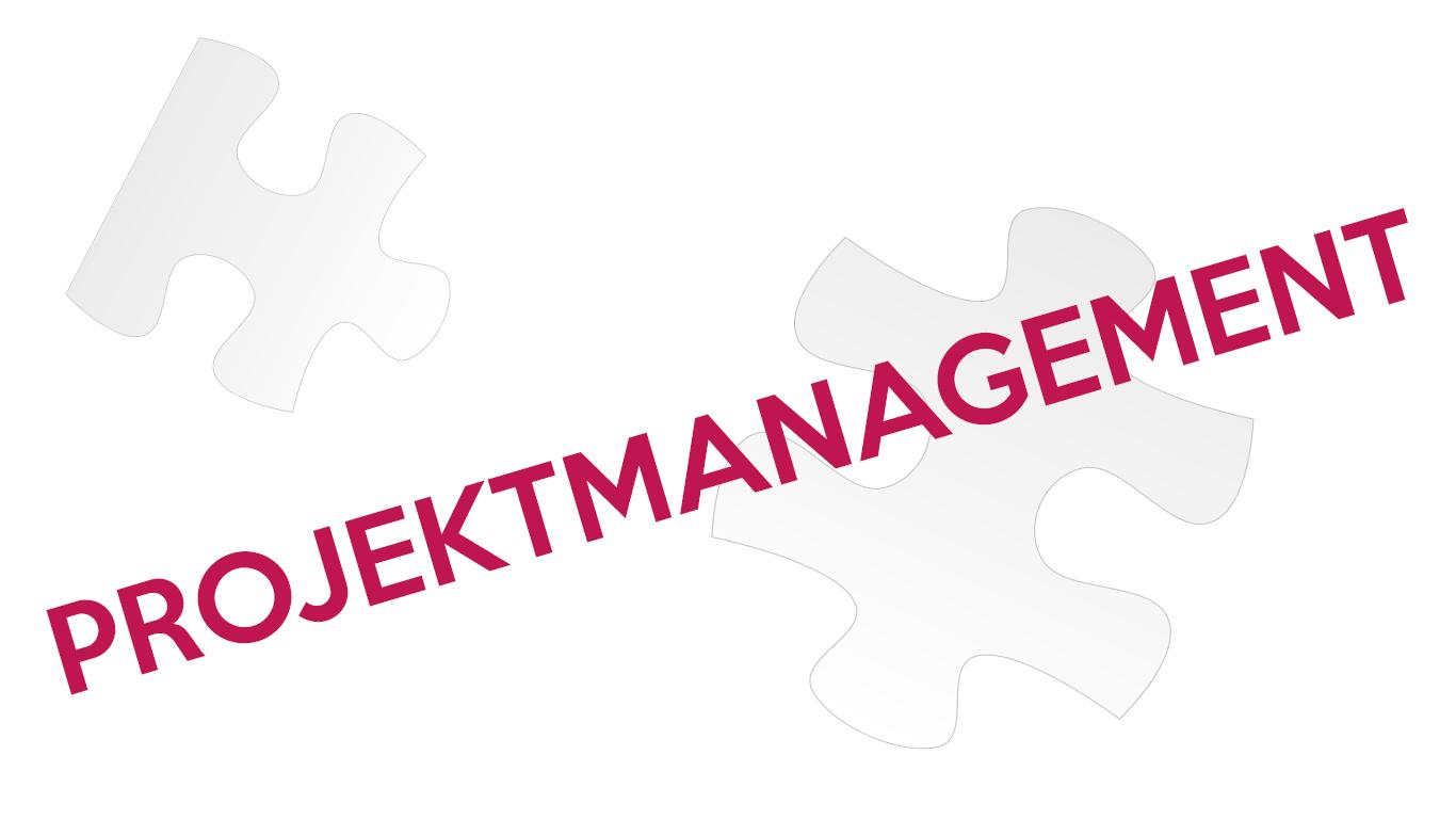 Projektmanagement Service